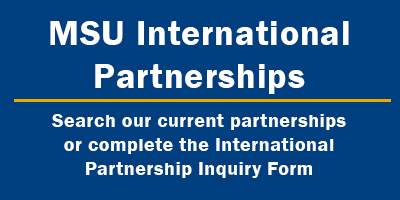 Link to International Partnerships