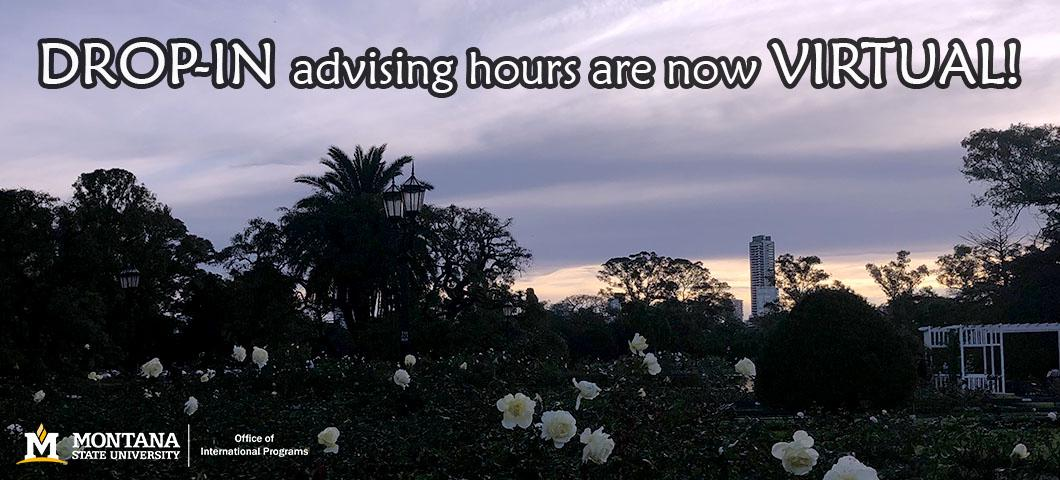 drop-in advising hours are now virtual