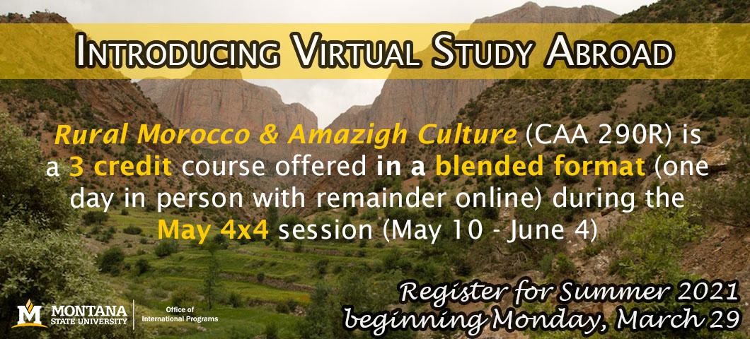 Introducing virtual study abroad