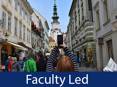 Faculty Led Info