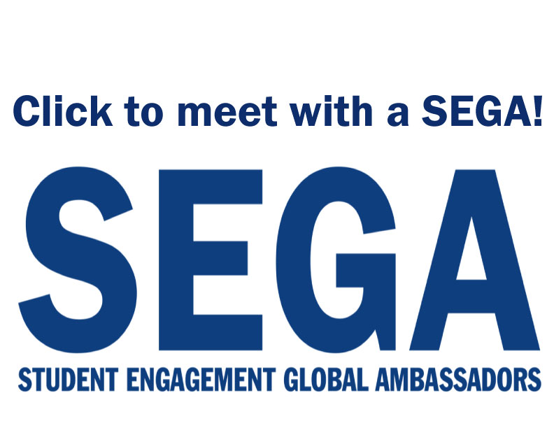 Meet with a SEGA