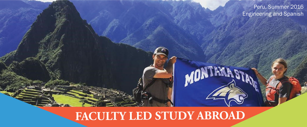 faculty led study abroad banner