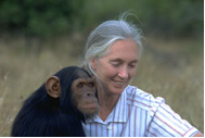 Jane Goodall photograph
