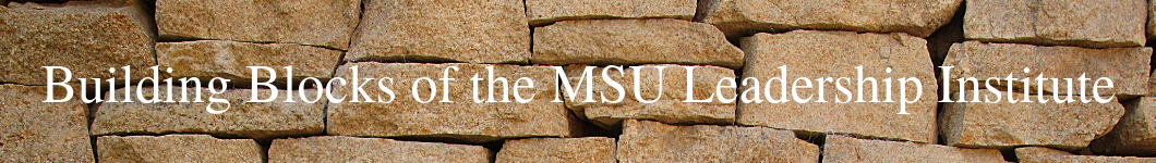 Building Blocks of the MSU Leadership Institute