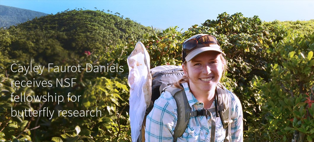 Cayley Faurot-Daniels receives NSF fellowship for butterfly research