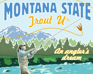Trout U poster