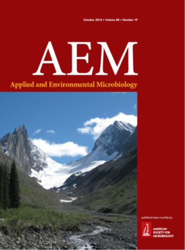 cover of AEM magazine