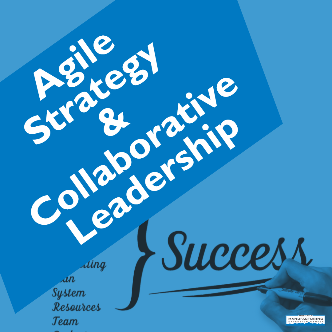 agile Strategies and Collaboration