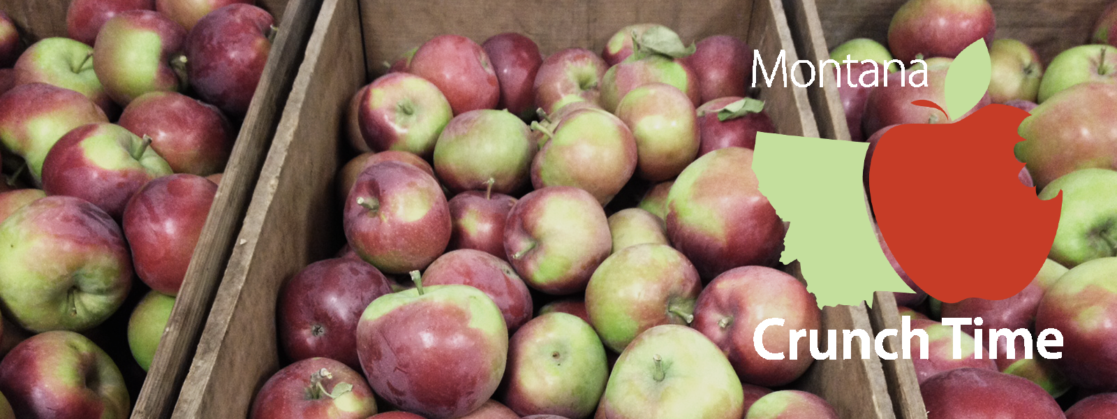 Boxes of apples with Montana Crunch Time logo