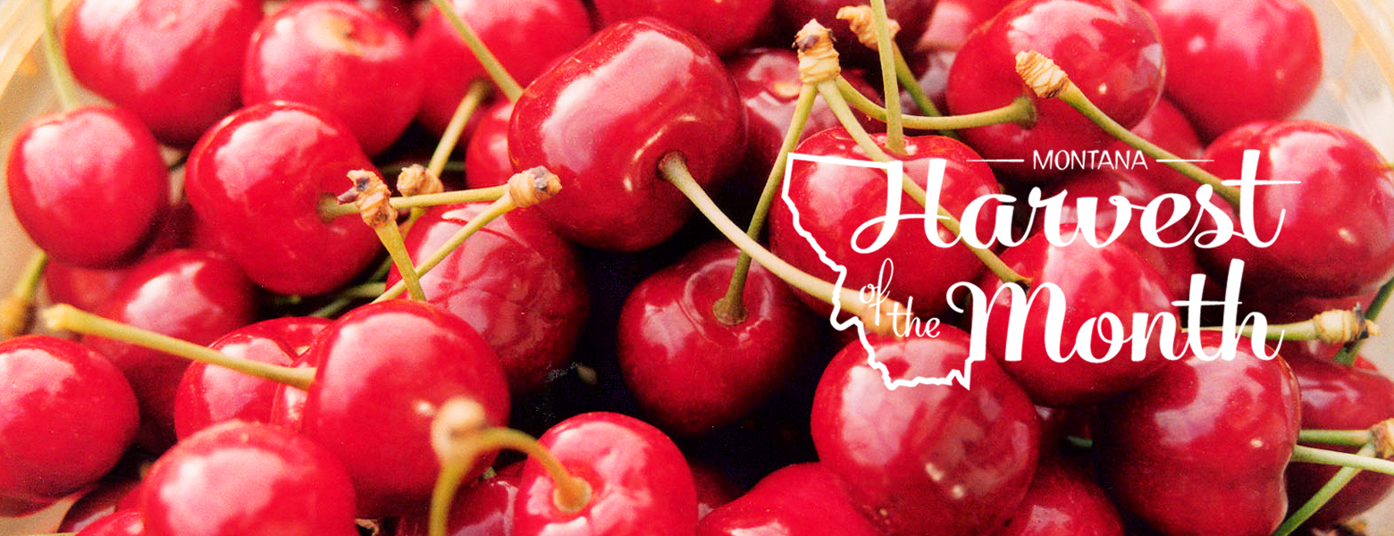 Photo of cherries with white Harvest of the Month logo