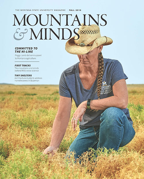 Mountains and minds cover photo, fall 2018