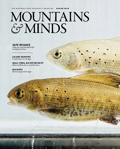 Mountains and minds cover photo, Spring 2018