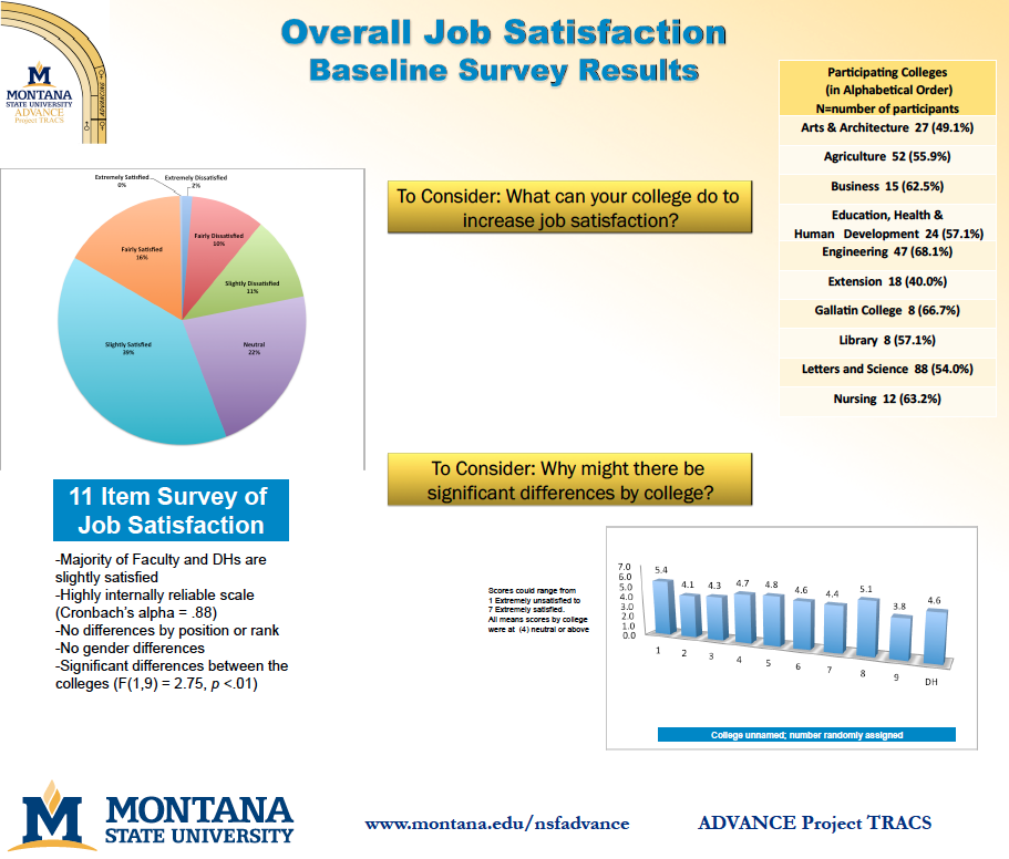 Overall Job Satisfaction