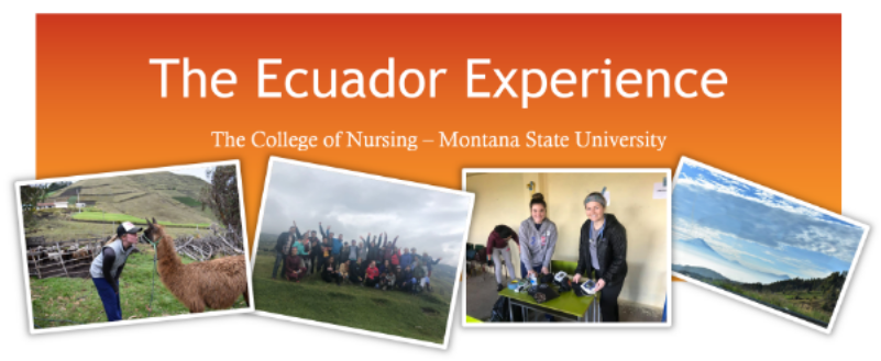 The Ecuador Experience
