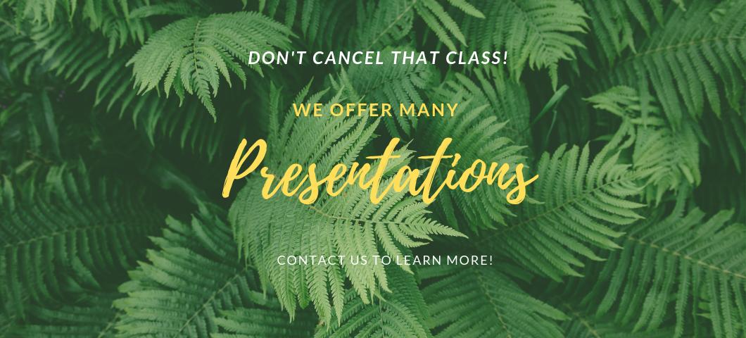 OHA Presentations Ferns
