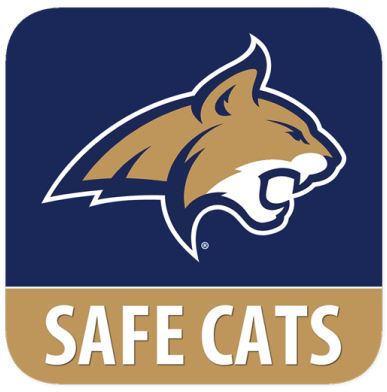 Safe Cats
