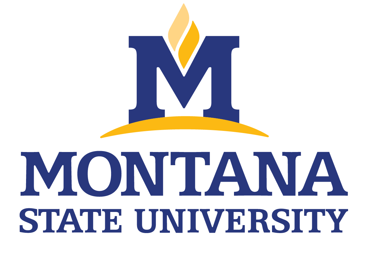 msu primary vertical logo