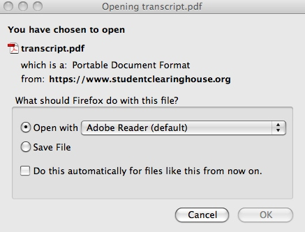 Opening the PDF