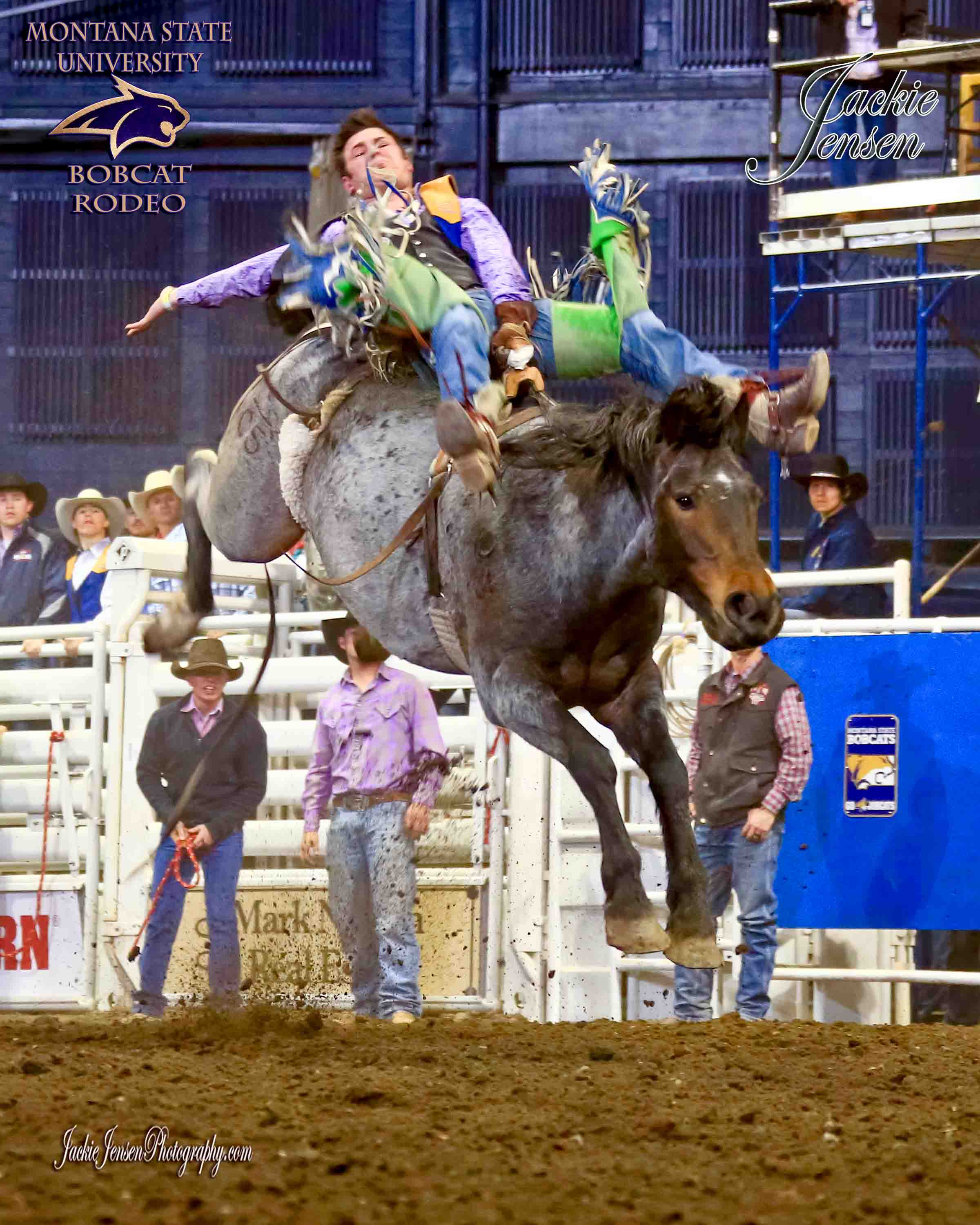 Spring Rodeo Bobcat Rodeo Office Montana State University
