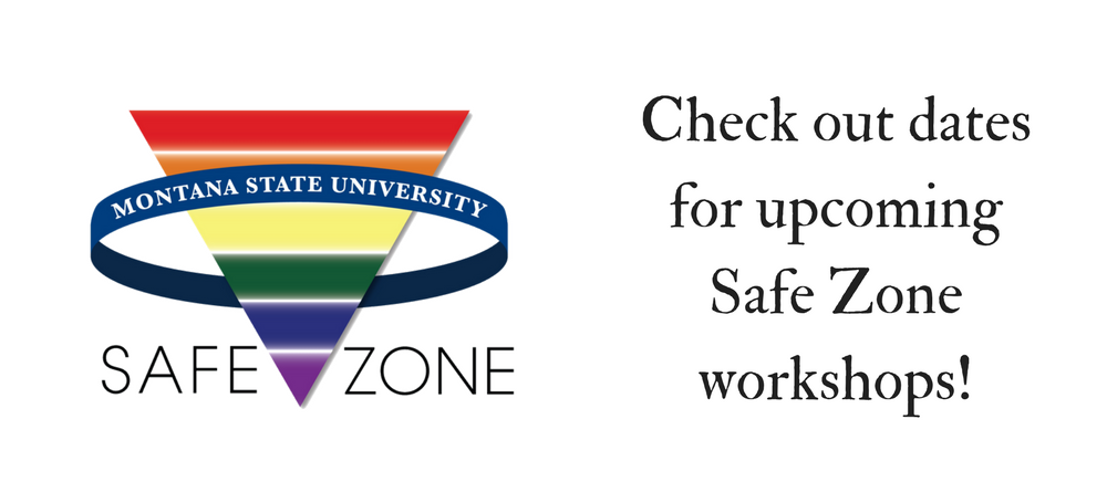 Check out dates for upcoming safe zone workshops!