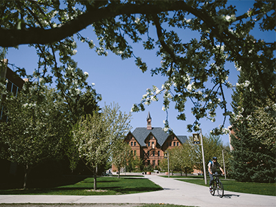 A man rides his bike past Montana Hall in the summer