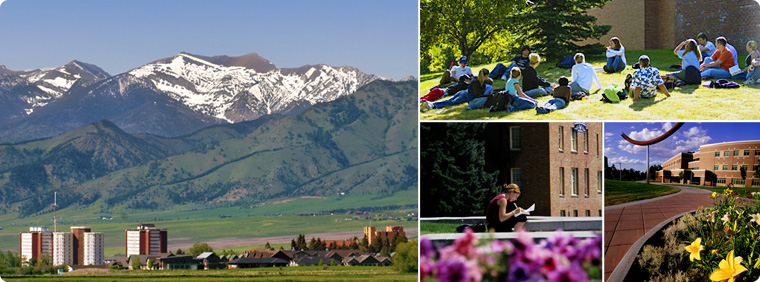 Summer Session - Summer Session | Montana State University