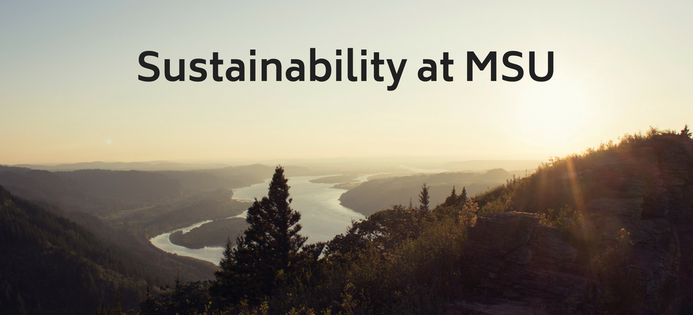 Sustainability at MSU