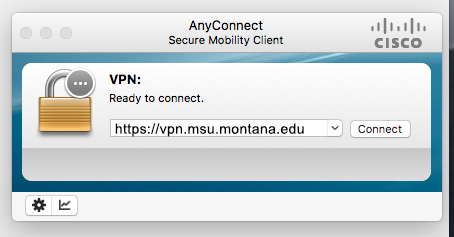 VPN server and connect field.