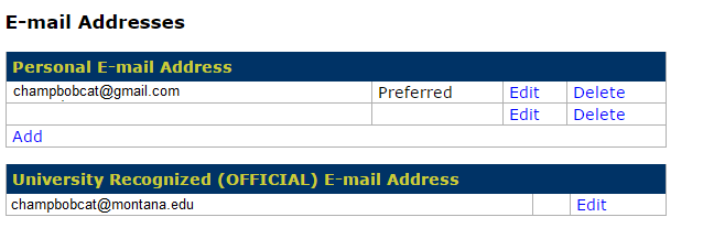 Image of preferred email address form in MyInfo