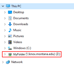 screenshot of the location to your mapped drive in the file explorer