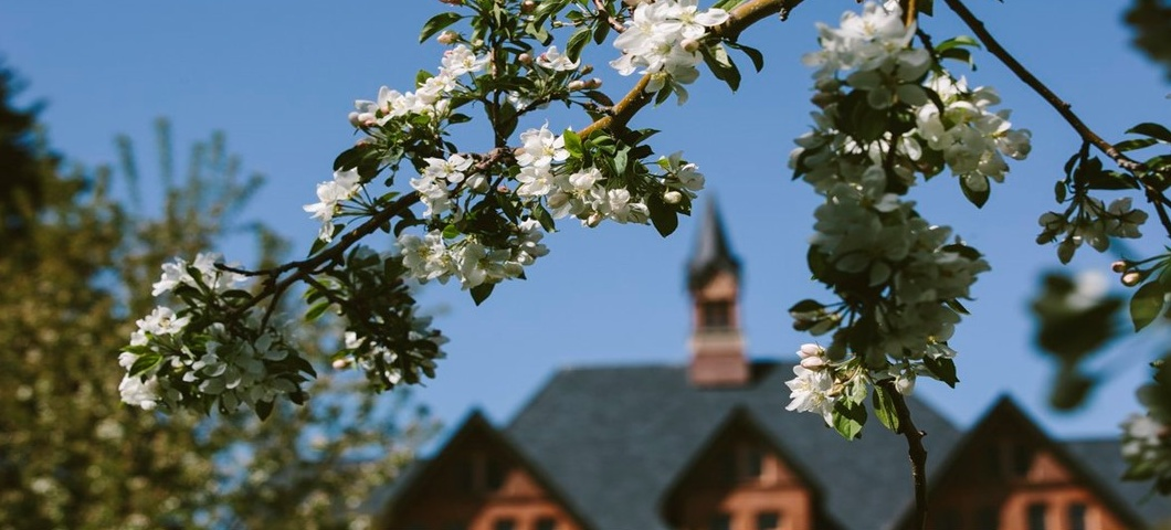 Image of Montana Hall in Summertime