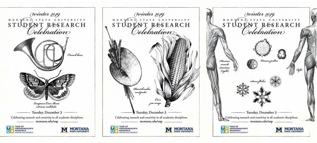 MSU 2019 Student Research Celebration