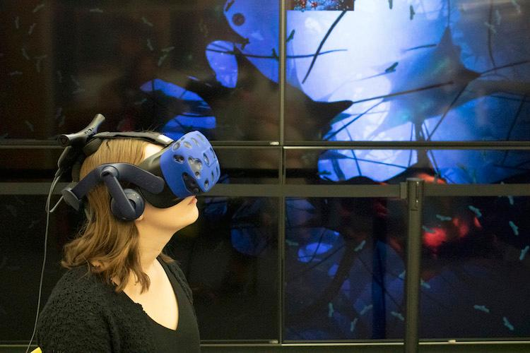 User of VR App for Exploring Inside the Human Body at the MSU Library Virtual Discovery Space