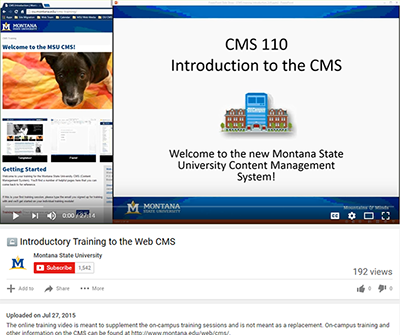 Screenshot of CMS video
