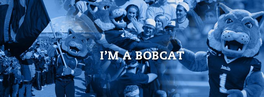 I'm a Bobcat! (Champ)