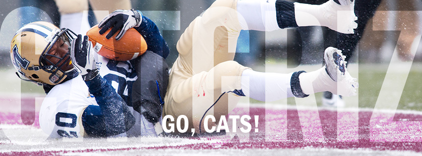 Go Cats - Cat/Griz