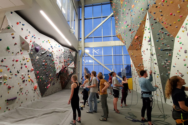 Climbing wall area with belay ropes and multi-colored hand-holds