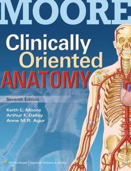 Clinically Oriented Anatomy 7th Edition